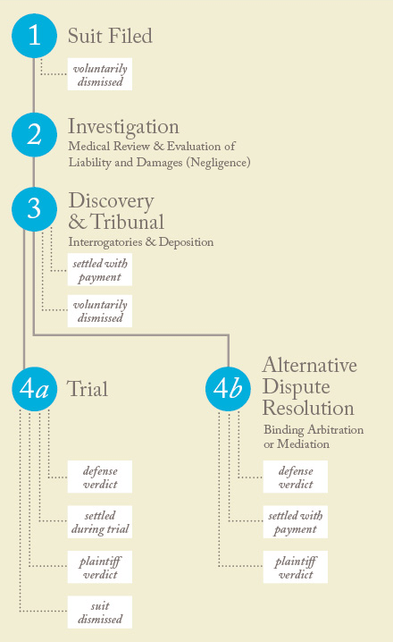 chronology of a case